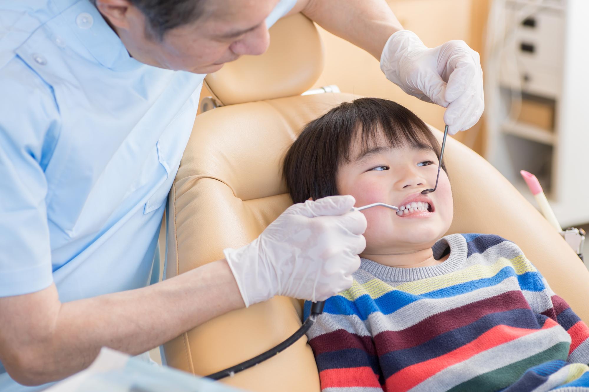 定期的に歯科検診